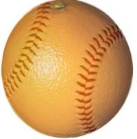 citrus series.jpg